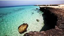 جزیره ی مرجانی - خسرو باقرپور
